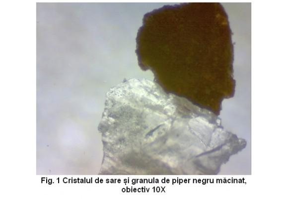 Sub microscop - Sare si piper