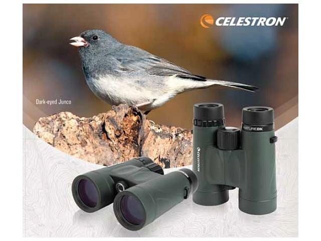 Birdwatching I. Termeni de optica