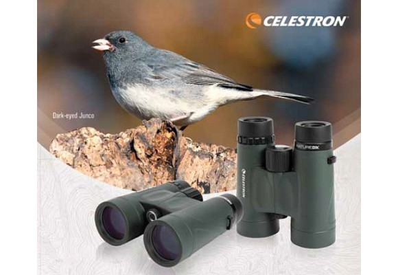 Birdwatching I. Termeni de optica